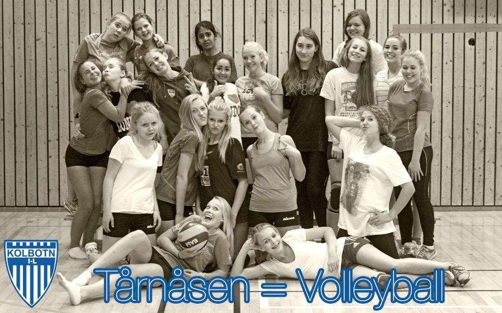 Tårnåsen = Volleyball